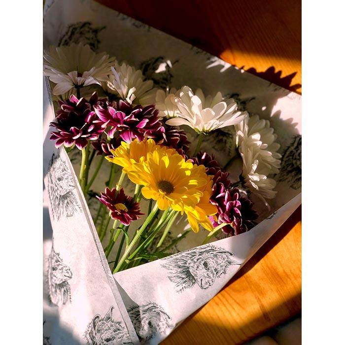Llama Tissue Flower Wrap